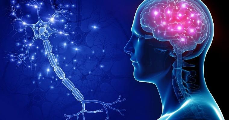 autonomiczny układ nerwowy rehabilitacja Gliwice